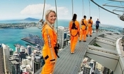 SkyWalk - Sky Tower, Auckland -1 adult