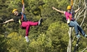 Flying-fox Zipline & Native Forest Walk Waiheke - Family