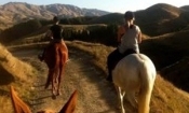 Horse Riding Excursion (1 Hr) - Wgtn