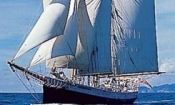 Sailing Tallship Adventure - Bay of Islands