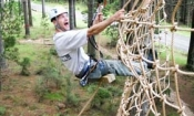 Tree Adventures High Flyer Courses 5-8 Auckland (
