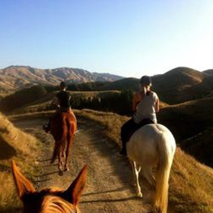 Horse Riding  2 hrs - Wgtn child