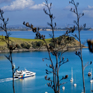 Waiheke Island Return Ferry Transfer - Adult