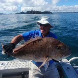 Snapper Fishing Bay of Islands - 7-8 people