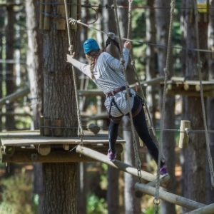 Tree Adventures High Flyer Courses 5-8 Auckland - 1 Person